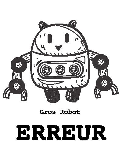 Erreur robot